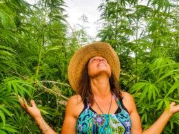 Winona Laduke standing in hemp field.